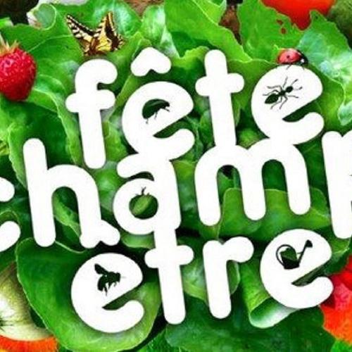 FÊTE CHAMPÊTRE - St Martin des Prés